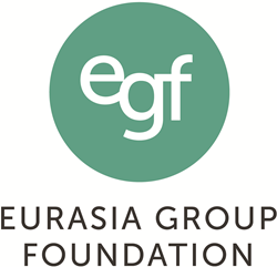 Eurasia Group Foundation, Digital consultant