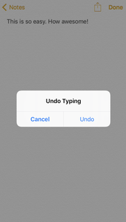 iPhone Undo Typing