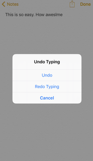 iPhone Redo Typing